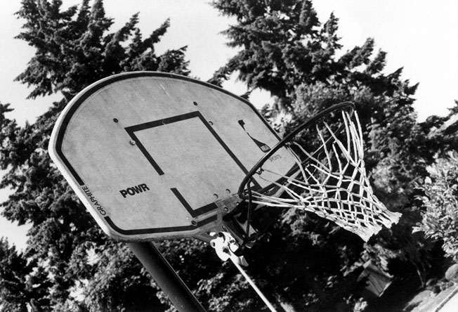A basketball hoop with some trees and the sky in the background